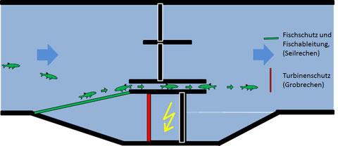Abb. 1: Getrennter Fisch- und Turbinenschutz