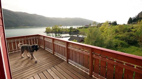 Unsere Terrasse mit Blick nach Westen