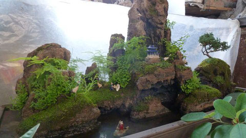 Das nette, alte Ehepaar an diesem Stand stellt aus Felsen, Moos und winzigen Figuren Chinas Naturidyllen nach. Kitschig, aber irgendwie schöön!