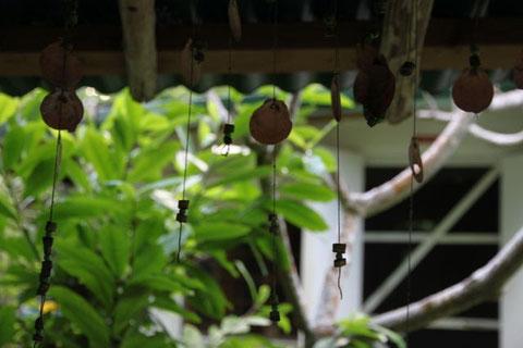 Taonos garden, Aitutaki