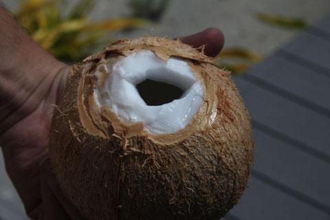 das Getränk dazu: eine Kokosnuss!