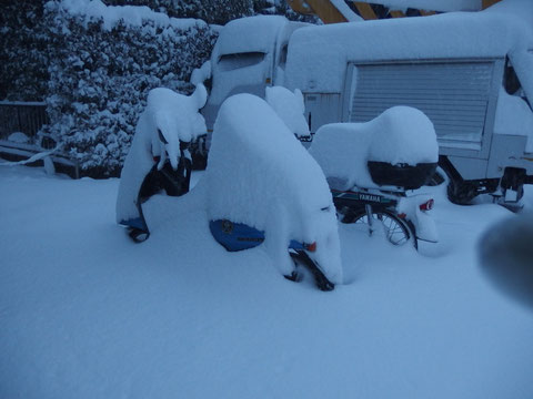 ちなみに当日の雪はこれよりも15センチくらい積もっていました。これは前日の写真なので(笑)