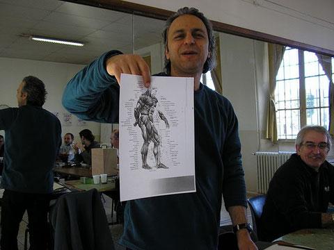 quelques explications sur l'anatomie de l'homme