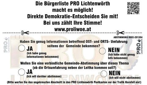 Dirkete Demokratie 0002-Falls du keine Postwurfsendung bekommen hast, Abschnitt einfach ausdrucken - Abstimmen und in den Postkasten von uns werfen!!!