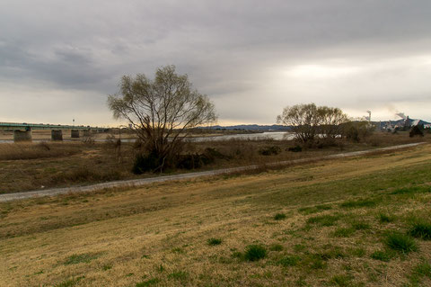 阿武隈川の奥側が亘理町