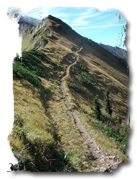 Oft ist der Weg lang und beschwerlich - aber er führt immer ans Ziel!