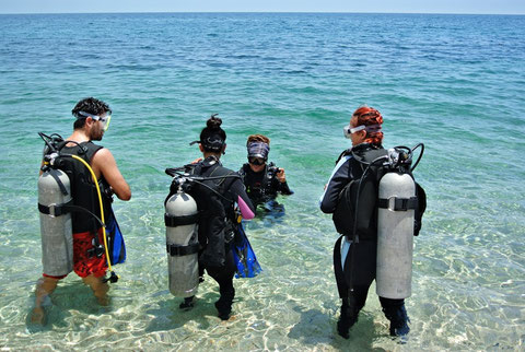 Scuba Diving in La Paz Baja Sur
