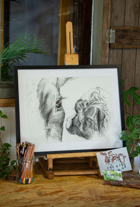 Ingelijste zwart wit tekening van een koe en een pasgeboren kalf