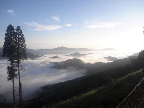 朝一番、通勤途中に見える雲海