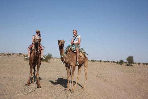 Auf Kamelsafari