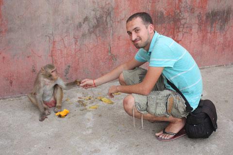 Ein putziger Anblick, so ein Affe beim füttern