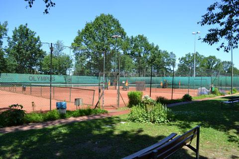 Die Tennisanlage