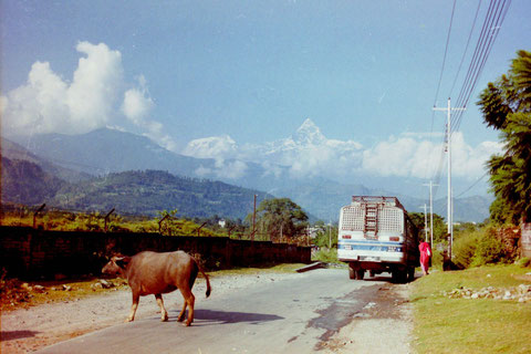 Straßenscene Pokhara