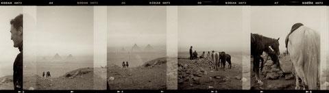 morgens halb sechs in der wüste