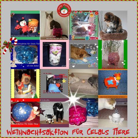 Wir sparen bis Nikolaustag ❤ von unserem Kleingeld für die Tiere ❤