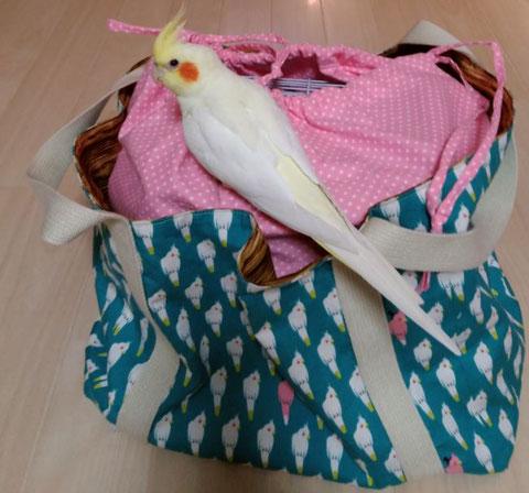 インコ 通院バッグ インコ 鳥 ハムスター モルモット デグー 爬虫類用 キャリーバッグ オーダーメイド ハンドメイド 旅行用 災害避難用