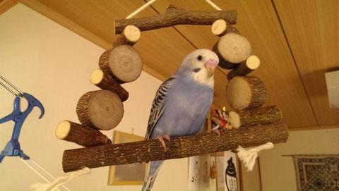 天然木おもちゃ ブランコ