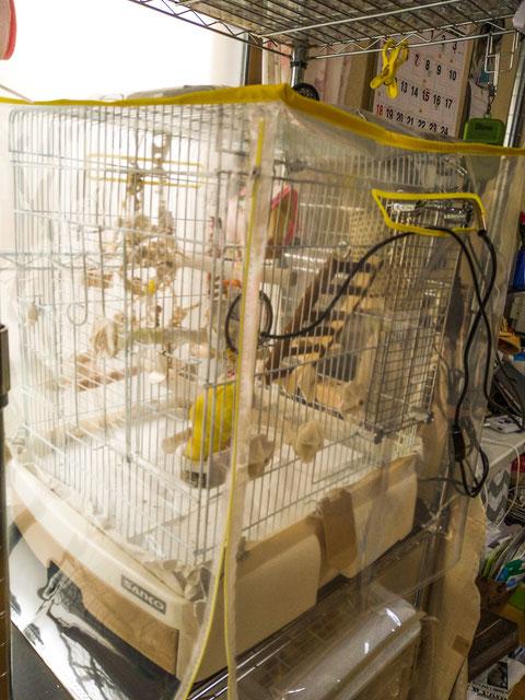 鳥インコ 鳥かご 保温 カバー 手作り 犬 ペット 鳥 犬 猫 ケージ カバー サークルカバー  ヒーター カバー(オーダーメイド 防寒 飛び散り防止 カバー )