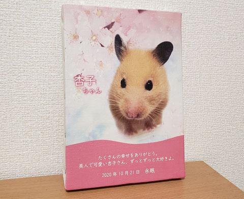 メモリアル キャンバス 写真 ペット インコ うさぎ 犬 猫 ハムスター デグー モルモット チンチラ