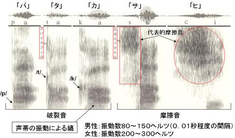 図5 代表的子音のスペクトログラム
