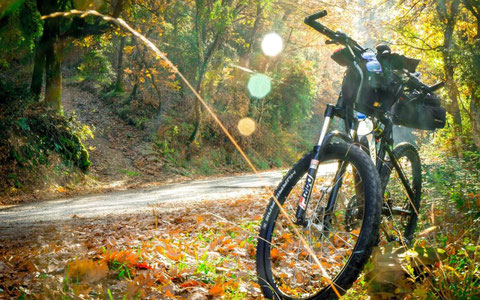 mountain bike in umbria  sorprendimi umbria  viaggi in bici umbria escursioni in bici umbria
