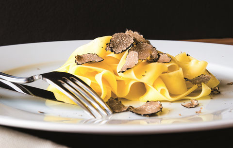 umbrian black truffles, umbria truffles, umbria truffle experience, umbria truffle hunting, umbria truffle hunt, umbria truffle festival, umbria truffle season, umbria truffle oil, umbria truffle tour, umbria truffle fabric, umbria black truffle