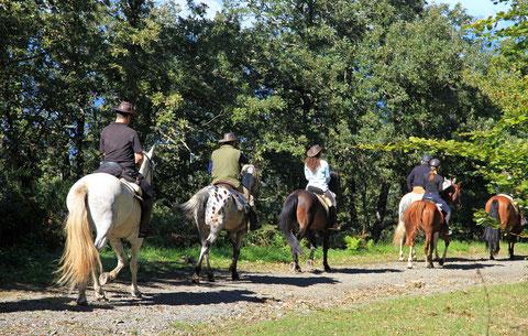 Horseback riding tour in Umbria