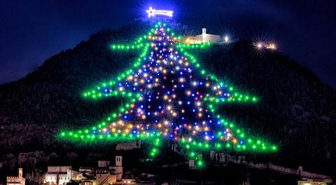 Gubbio l'albero di Natale più alto del mondo