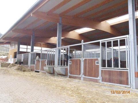 4 Aussenboxen 4 x 3 m und Jungpferdelaufstall