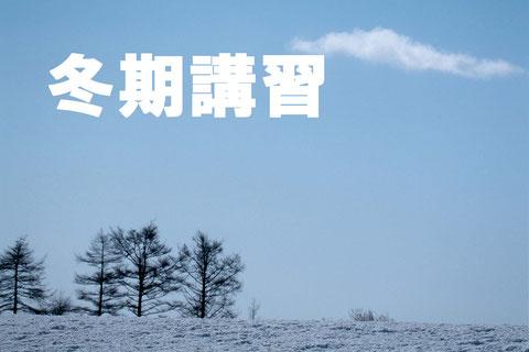 西大宮ゼミナール 国語力 小学 中学 冬期講習