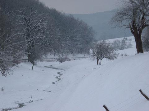 Volksen, Schnee, Winter 2010,Einbeck