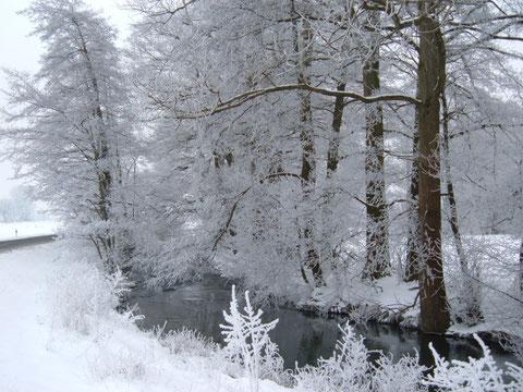 Ilme, Ellensen, Winter, Januar, Schnee, Temperatur im Januar