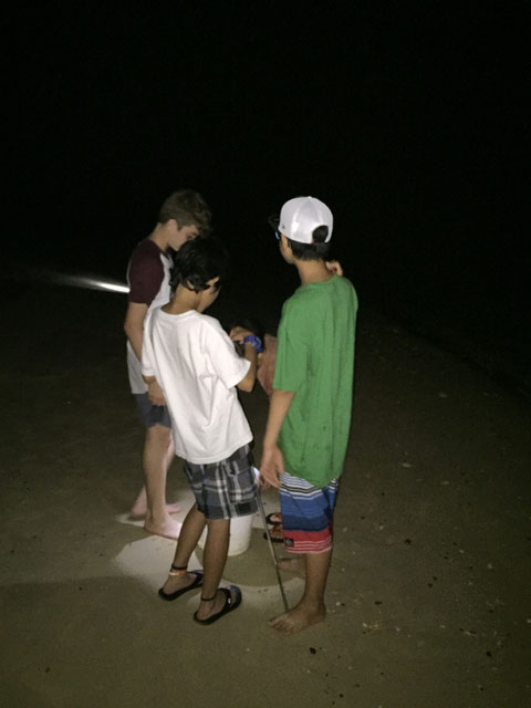 They enjoyed catching sand-crab till midnight.   They stayed up late but it should be much better than doing video or computer games.