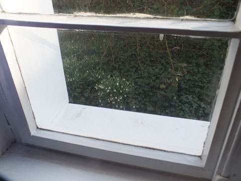 Blick aus dem Fenster (5)