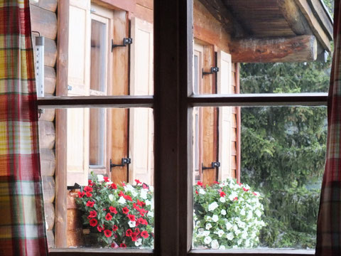 Blick aus dem Fenster (4)