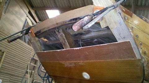 Début de la reconstruction : L'acacia remplace le hêtre (Moins putrescible)