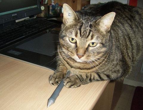 Mon chat Frimousse, allongé sur le bureau, le stylet entre les pattes