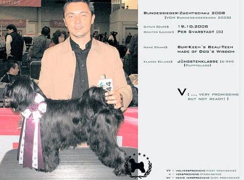 CACIB Bundessiegerzuchtschau Dortmund 2008 | Bur-Keeh´s Beau-Teeh made of Dog´s Wisdom