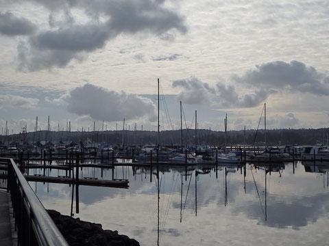 die Delphin im Hafen von Poulsbo, auf unsere Rückkehr - Anfang Februar - wartend