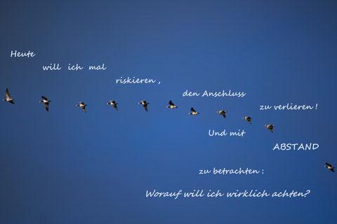 Foto: Heinz Gardeweg