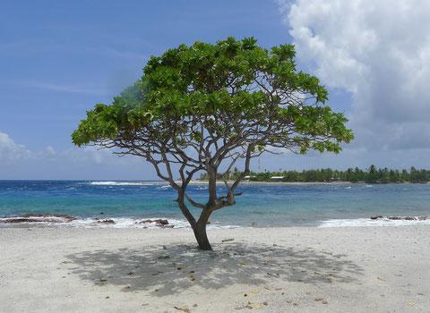 Rangiroa. Photo Drukpa Tahiti.