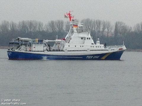 Quelle: MarineTrafficc.com