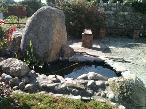 Vorgartenbereich - Steinfassung Teich