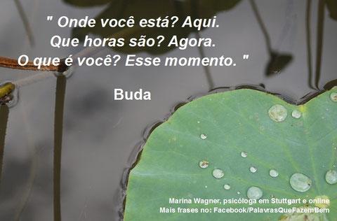 Palavras que fazem bem, Buda