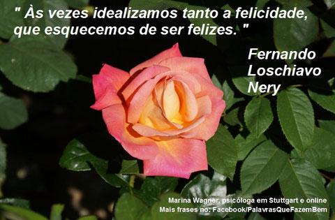 Palavras que fazem bem, Fernando Loschiavo Nery