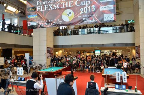 2013 FLEXSHCE CUP