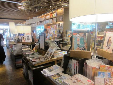 観ていて楽しいのは洋書コーナーと、美術コーナーと、旅行のコーナー。二時間くらい、いました。