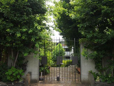 ダーさんも私もどちらかと言ったらこちらの家のほうを気に入っています^^ また 癒しの館シリーズを紹介していきたいな、と思います。