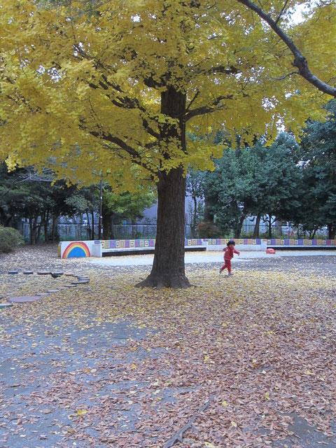 子供が遊びまわっていた。ここは豚公園^^