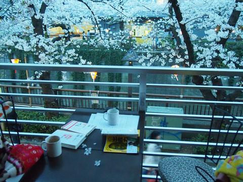 いい気持ち^^ 幸せなひと時^^・・・ときどき桜がひらひら舞って テーブルへとおりてきました^^
